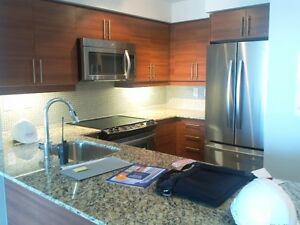 2 bedroom condo in Liberty at King W/Bathurst from Dec1, 2016