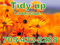 Tidy UP Landscaping     Spring Clean up      Lawns