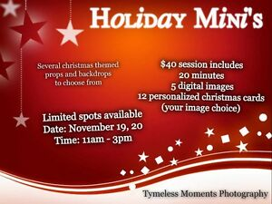 Christmas Mini for $40 Kitchener / Waterloo Kitchener Area image 1
