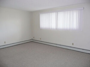 One Bedroom Suite in the Heart of Old Strathcona Edmonton Edmonton Area image 4