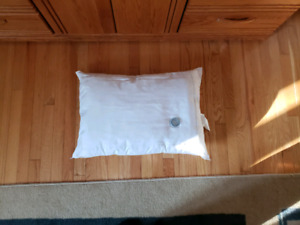 Chiropractic Water Pillow new