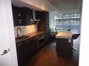 Gorgeous new 1+1 Bedroom King street west! DNA3, 1030 King St W