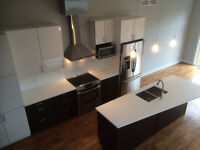 Brand New Executive House in Little Italy