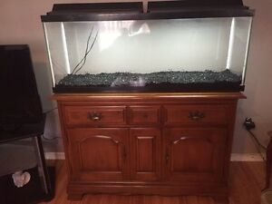 50g/stand/2 heaters/filter/canopy/gravel 200$ firm