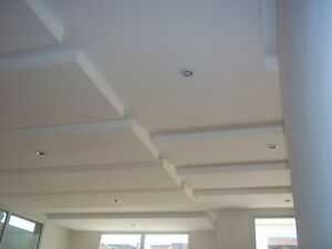 Drywall, steel frame, taping, insulation, T-bar ceiling Edmonton Edmonton Area image 2