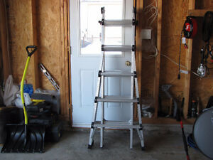Multi Purpose Extendable Ladder