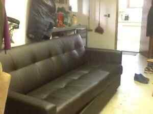 Couch/bed