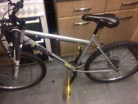 Trax 9 speed mountain bike