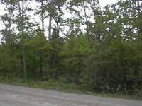 25 Acres near Gillies Lake and Dyers Bay in the Bruce Peninsula