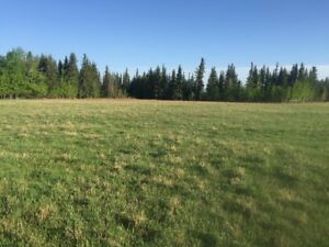 143 Acres of  Prime Land for Sale