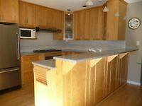SOLID BIRCH KITCHEN CABINETS WITH CORIAN COUNTERTOP FOR SALE
