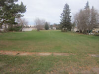Willingdon-  beautiful lots for sale, serviced