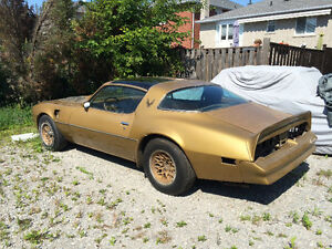 1978 Trans-am.... special edition..4/spd ..matching #'s..6.6 T/A