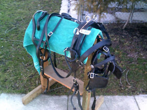 PONY/COB LEATHER HARNESS