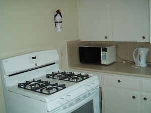 Anchor Motel apartment fully equipped $550 All bills paid.