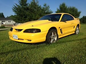 Summer Fun 1995 Ford Mustang GT
