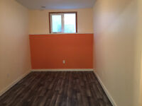 Fully Renovated House for Rent in East Kildonan Area *MUST SEE*