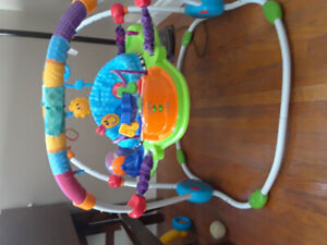 Baby Einstein Exersaucer/Jumper