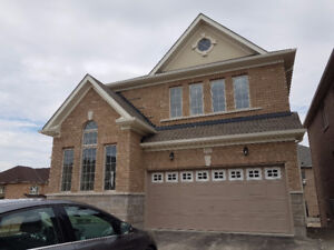 Brand new Detached house for rent