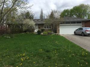 Renovated 3bedroom detached walking distance from Yonge,Hghwy 7