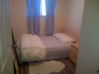Room for rent for Pan Ams