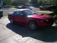 1999 35th Anniversary Ford Mustang Convertible