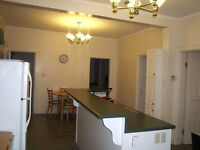 VERY NICE NON SMOKING FURNISHED ONE BEDROOM APARTMENT FOR RENT