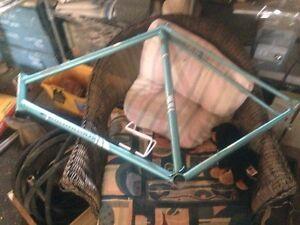 Marinoni Campagnolo Special Bike Frame