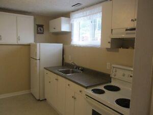 2 Bedroom Basement Apt, for 50 Plus  Tennant St. John's Newfoundland image 1