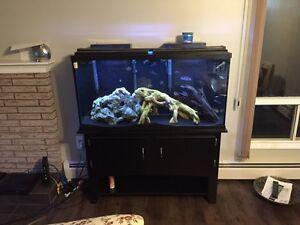 Marineland 60 gallon fish tank