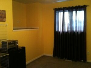 Nice room for rent July 1st