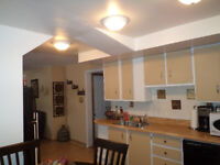 Large one bedroom plus den apartment for Rent