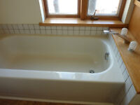 Free Bathtub and Faucets