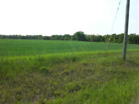 1 ACRE CLEARED LOT IN CLEARVIEW