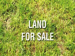 Want to buy Land with or without building
