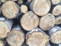 Fire wood seasoned