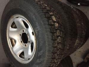 """"""" avalanche x-treme studded tires on rims."""