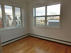 Spacious 1 bdrm apt for April 1st or earlier | South End