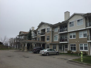 ARBOUR LAKE, ONE BEDROOM CONDO FOR RENT