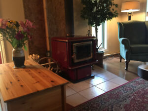 Wood Burning Stove- Pacifica Super 27