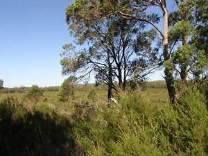 50 Acres of land located in Mt William National Park, Tasmania Gladstone Dorset Area Preview