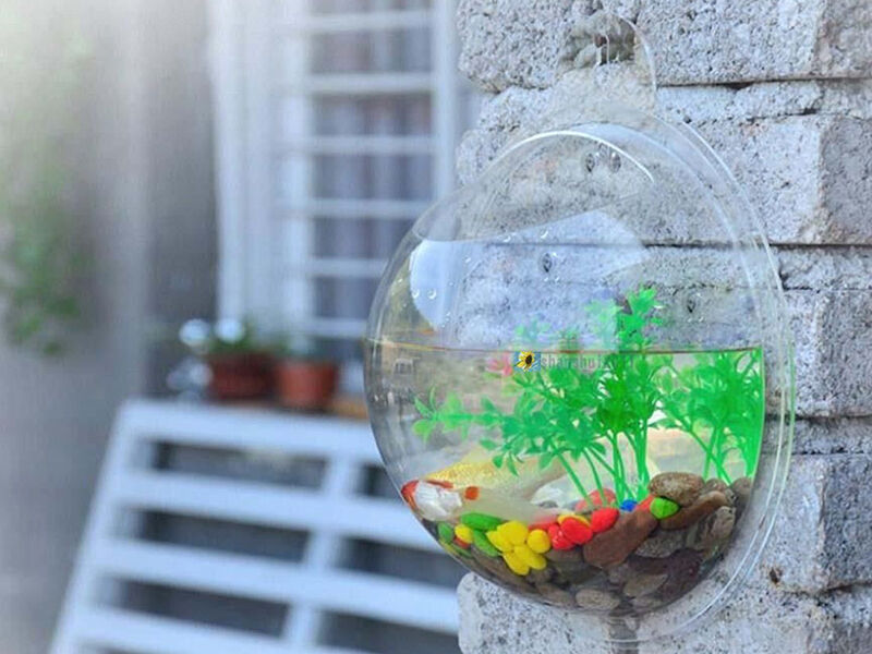 How To Make A Mini Aquarium Ebay