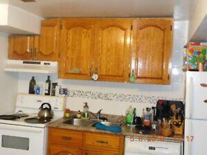 2 Bedroom Basement Apartment- Ajax.