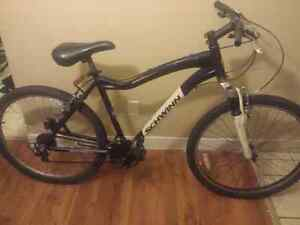 Schwinn Conversion MTB