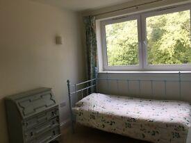 Single bedroom with en suite, in excellent condition £400 all inclusive