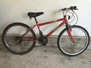 "Mountain Bike, 24"" wheels"