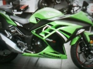 2014 ninja never rode no km on it