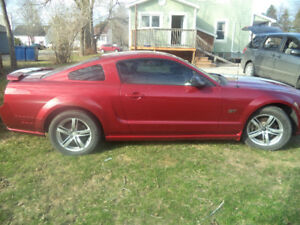 2005 Mustang and up! Want to buy!