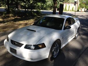 2004 Ford Mustang GT Coupé (2 portes)