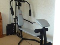 YORK MULTI GYM G102 BARGAIN@£100
